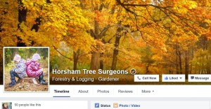 Horsham Tree Surgeons Facebook page
