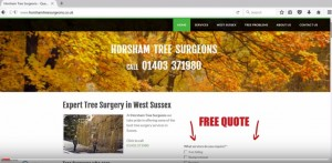 Horsham Tree Surgeons Youtube video